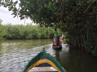 ecotours-boquilla-canoe-trip-thru-mangroves